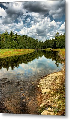 Reflection Of Nature Metal Print by Joe  Ng