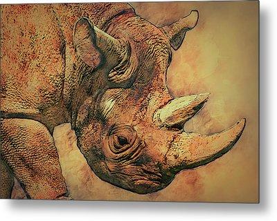 Rhino 5 Metal Print