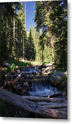 Rocky Mountain Summer Metal Print by Michael J Bauer