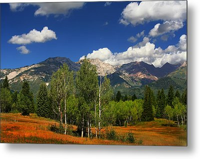 Rocky Mountains Metal Print by Mark Smith