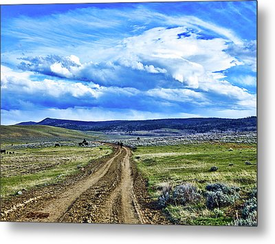 Room To Roam - Wyoming Metal Print by L O C