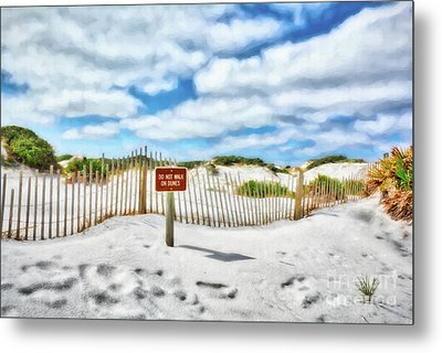 Metal Print featuring the photograph Sand Dunes At Grayton Beach # 4 by Mel Steinhauer