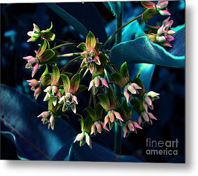 Satin Metal Print by Elfriede Fulda