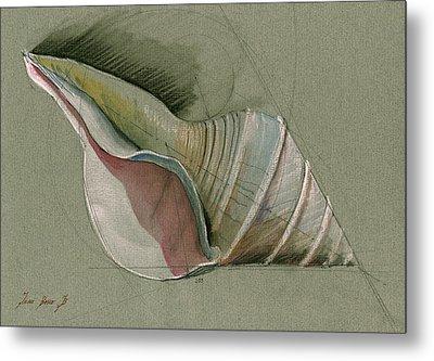 Seashell Art Painting Metal Print by Juan  Bosco