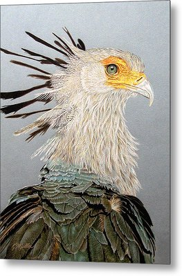 Secretary Bird Metal Print