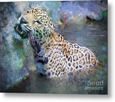 Seven Year Itch Metal Print by Judy Kay