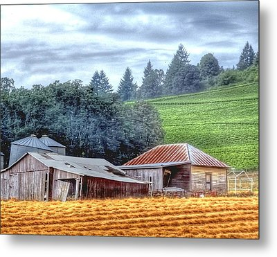 Shed And Grain Bins 17238 Metal Print by Jerry Sodorff