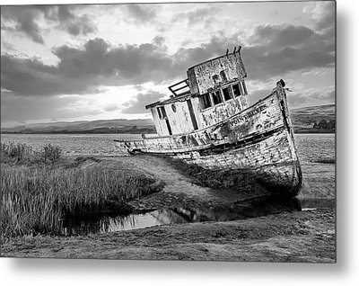 Shipwrecked In Point Lobos Metal Print by Jon Glaser