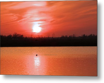 Silky Sunset Metal Print