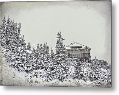 Metal Print featuring the photograph Snow In July by Teresa Zieba