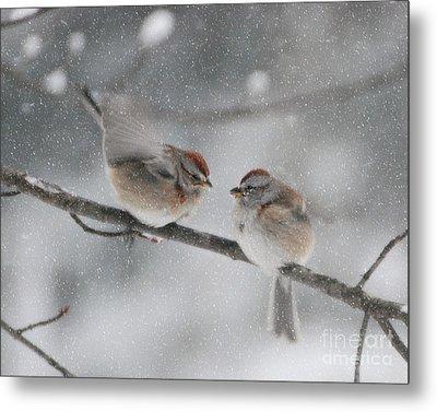 Sparrow Kiss Metal Print by Lila Fisher-Wenzel