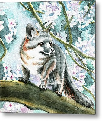 Spring Fox Metal Print by Antony Galbraith
