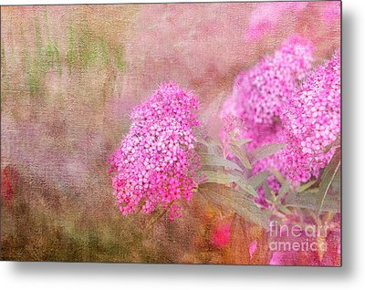 Metal Print featuring the photograph Springtime by Betty LaRue