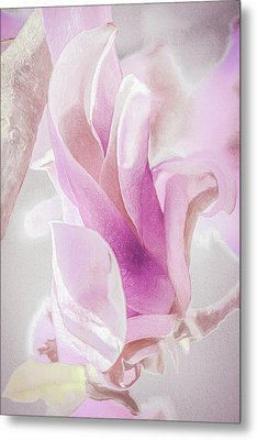 Springtime Magnolia Bloom Metal Print by Julie Palencia