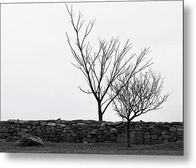 Stone Wall With Trees In Winter Metal Print by Nancy De Flon