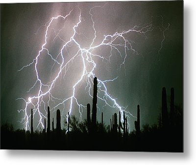 Striking Photography Metal Print