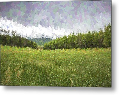 Stuck In The Field II Metal Print by Jon Glaser