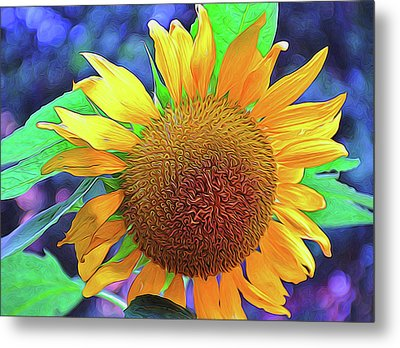 Metal Print featuring the photograph Sunflower by Allen Beatty