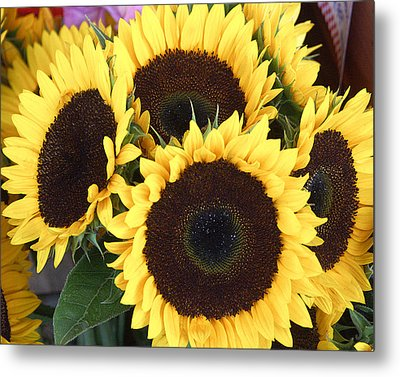 Sunflowers Metal Print by Tom Romeo