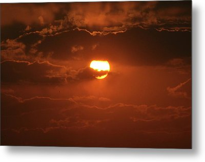 Metal Print featuring the photograph Sunset by Linda Ferreira