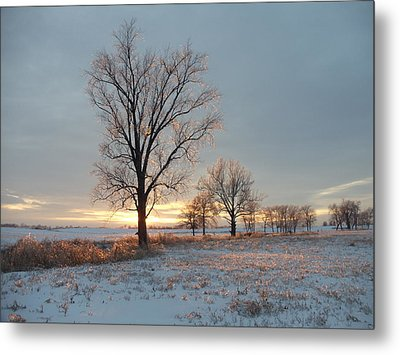 Sunset Over Icy Field Metal Print by David Junod