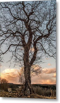 The End Of Another Day Metal Print by Wayne King