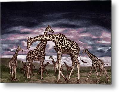 The Herd Metal Print by Peter Piatt