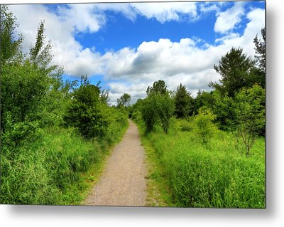 Metal Print featuring the photograph The Path Ahead by Anthony Rego