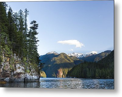 The Rugged, Rocky Forested Shoreline Metal Print by Taylor S. Kennedy