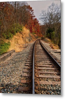 Metal Print featuring the photograph The Tracks In The Fall by Mark Dodd