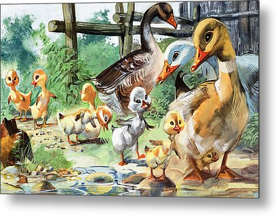 The Ugly Duckling Metal Print by English School