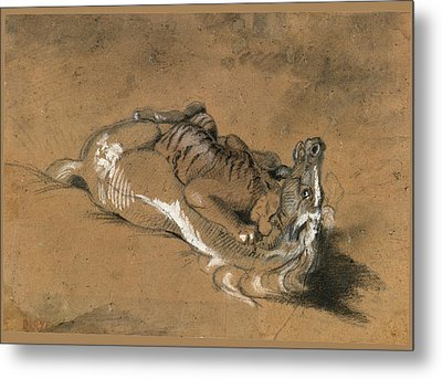 Tiger Attacking A Horse Metal Print by Antoine-Louis Barye