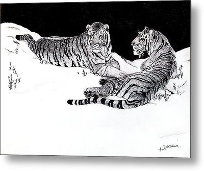 Tigers In The Snow Metal Print by Hari Mohan