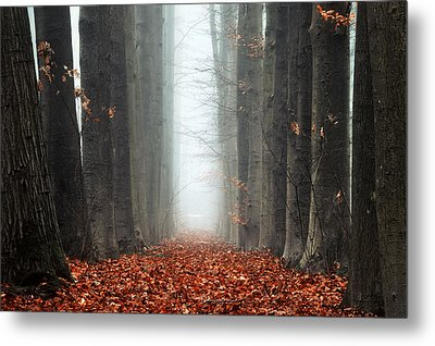 To Nowhere Metal Print by Martin Podt