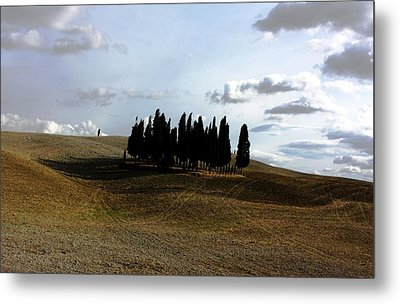 Toscana Metal Print by Pat Purdy