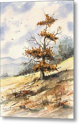 Tree On A Hillside Metal Print