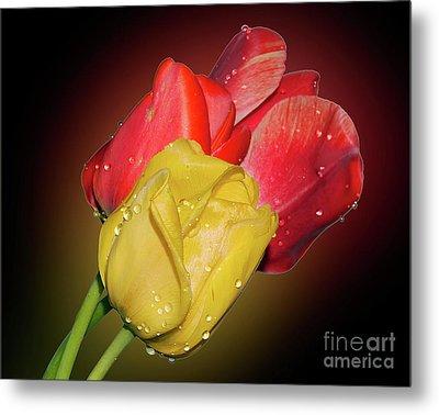 Tulips Metal Print by Elvira Ladocki