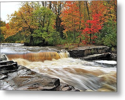Unnamed Falls Metal Print by Michael Peychich