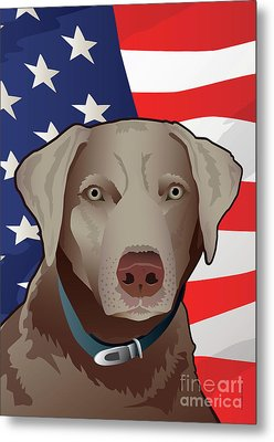 Usa Silver Lab Metal Print