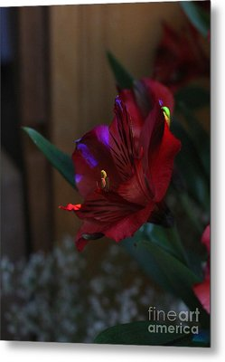 Metal Print featuring the photograph Waiting For You by Marie Neder
