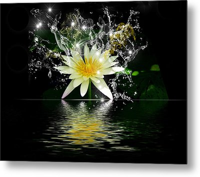 Water Lily Metal Print by Gordon Engebretson
