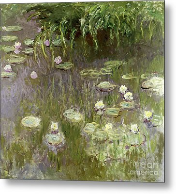 Waterlilies At Midday Metal Print