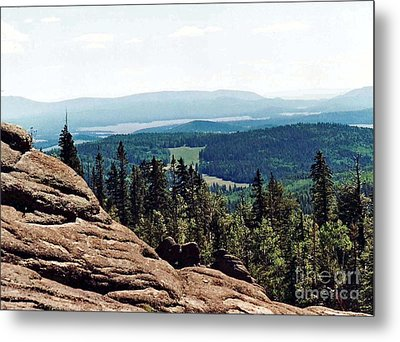 Metal Print featuring the photograph White Mountains Of Arizona by Juls Adams