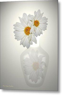 White On White Daisies Metal Print by Joyce Dickens