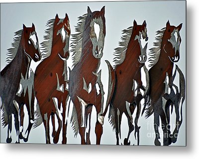 Metal Print featuring the photograph Wild And Free by Juls Adams
