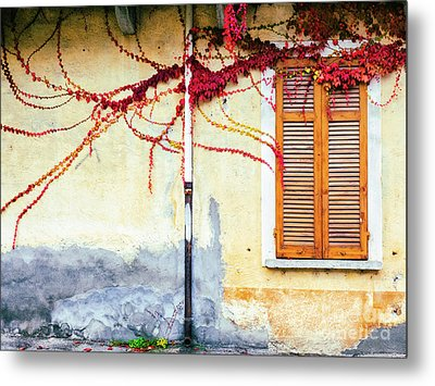 Metal Print featuring the photograph Window And Red Vine by Silvia Ganora