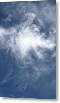 Wing And A Prayer Metal Print by Cathie Douglas