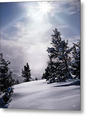 Winter Light Metal Print by Leland D Howard