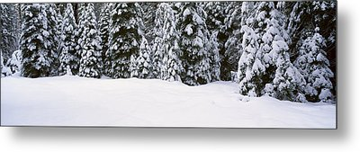Winter Snowstorm In The Lake Tahoe Metal Print by Panoramic Images