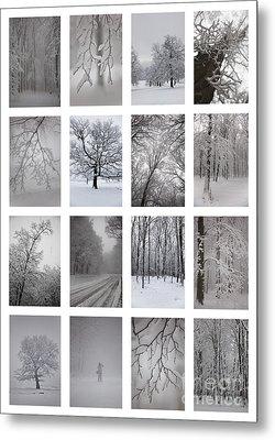 Winter Time Metal Print by Gabriela Insuratelu